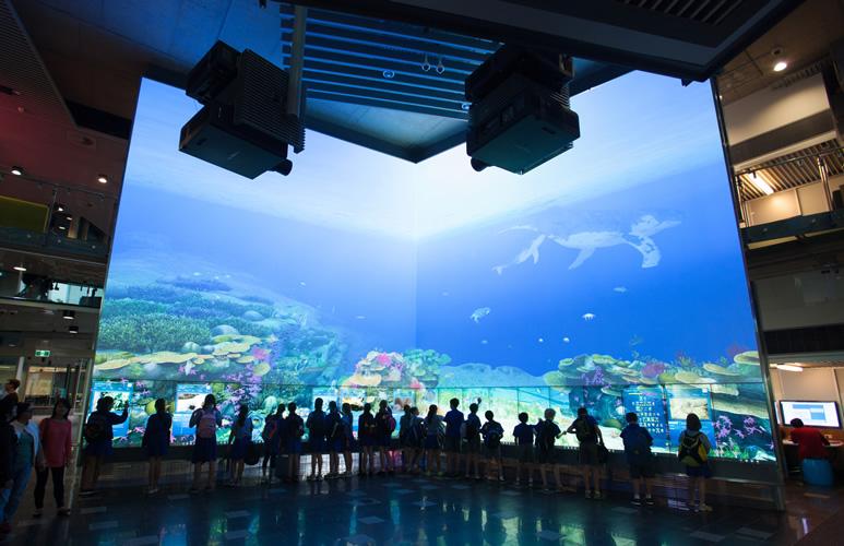 Case Studies Projector Panasonic Global