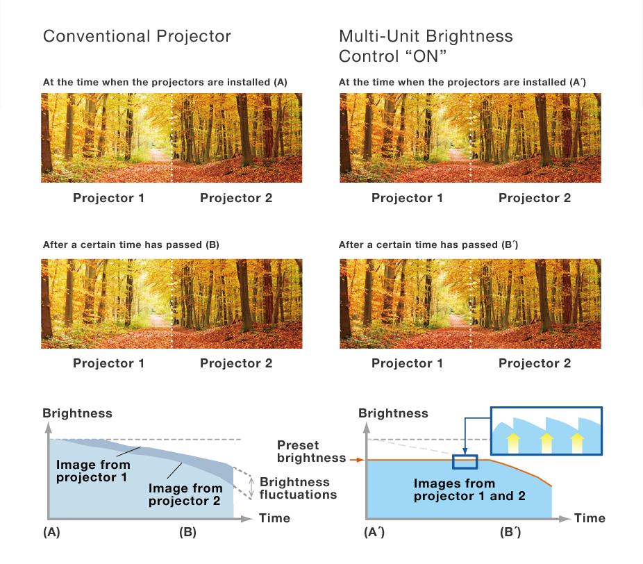 Multi-Unit Brightness and Color Control