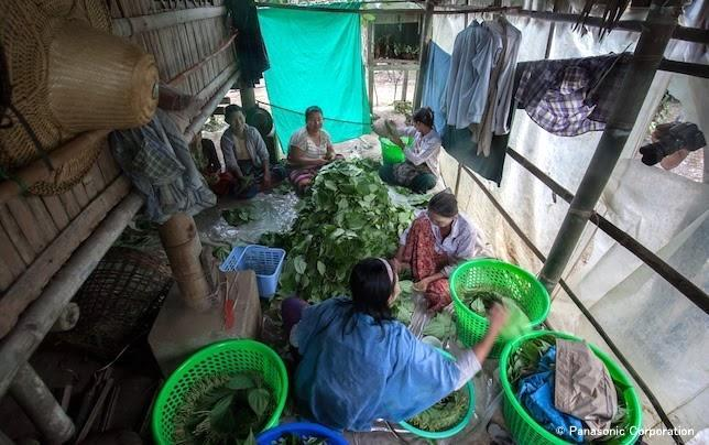 201710_Myanmar_employee_report_4.jpg