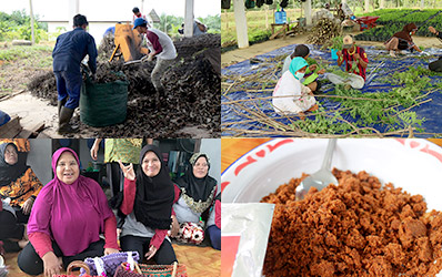 Photo:Activity Report from Indonesia